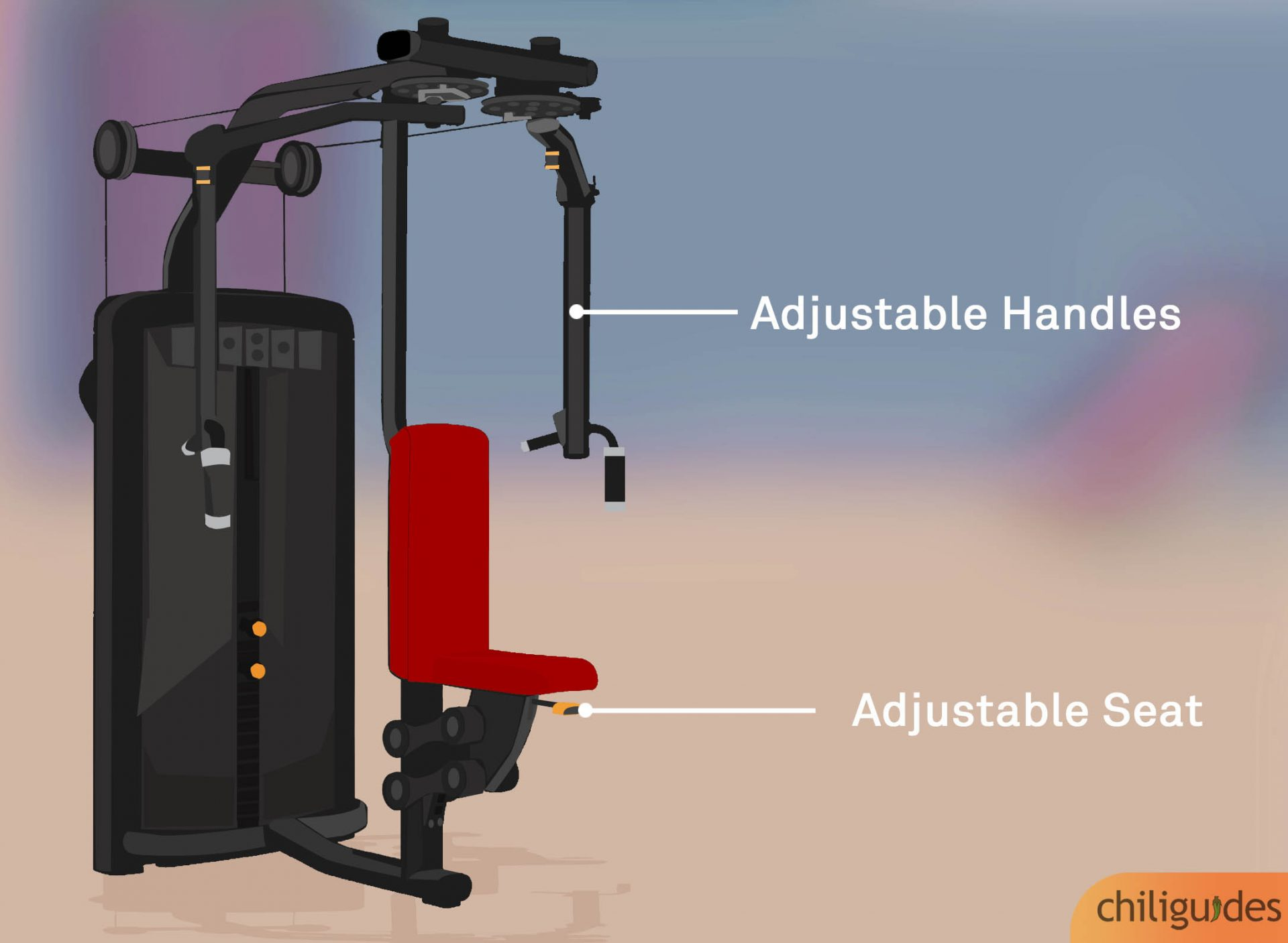 The seat and handles must be adjustable.
