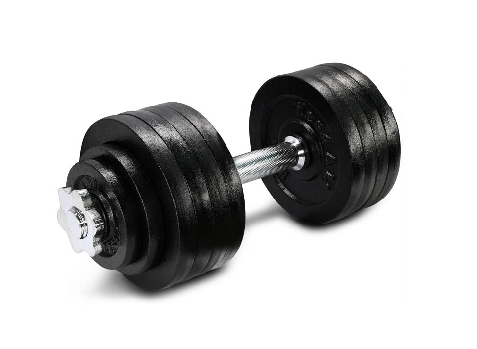 Best Plate Loaded Adjustable Dumbbells